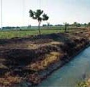 New Irrigation Schemes Sanctioned