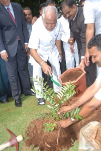 Chief minister b s Yadiyurappa planted at lalit ashok on the occation of world environment Day