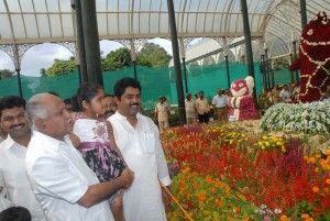 chief minister watching flower show with Grand Dotor  at Lalbagh Sri R Ashok minister for transport ,and Sri Raghavendra mp were present.